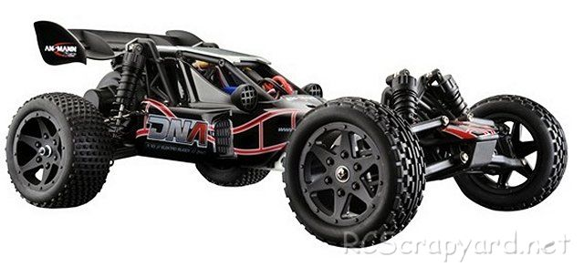Ansmann DNA - 1:10 Electric Buggy
